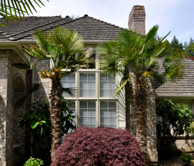 house cleaning sammamish