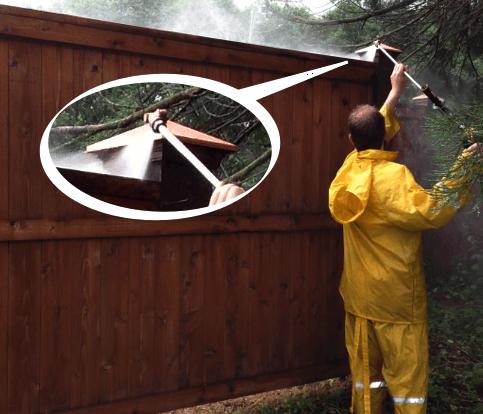 staining fence seattle wa