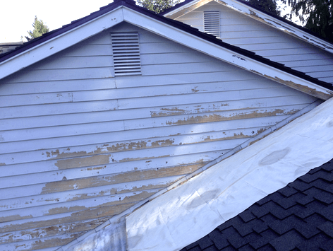 paint on roof
