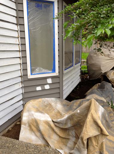 covering plants drip paint