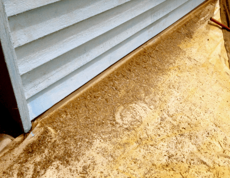 removing loose paint from wood siding