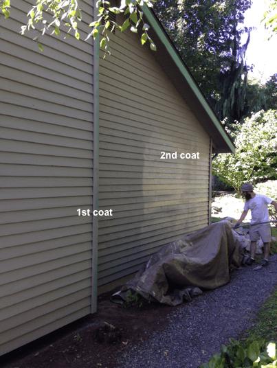 bellevue paint contractor